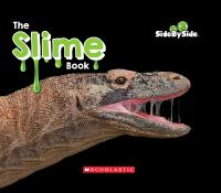 Cover image for The slime book / by Erin Kelly.