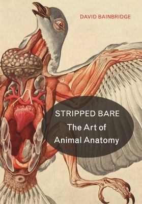 Cover image for Stripped Bare : The Art of Animal Anatomy