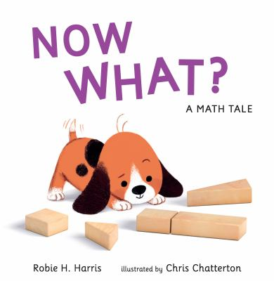 Cover image for Now what? : a math tale / Robie H. Harris ; illustrated by Chris Chatterton.