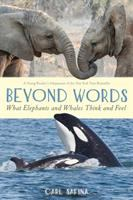 Cover image for Beyond words : what elephants and whales think and feel / Carl Safina.