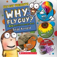 Cover image for Why, Fly Guy? : a big question & answer book / Tedd Arnold.