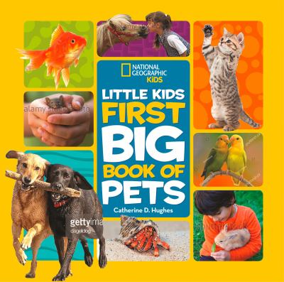 Cover image for Little Kids First Big Book of Pets