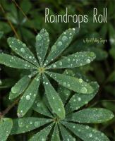 Cover image for Raindrops roll / April Pulley Sayre.