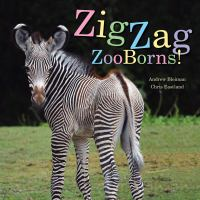 Cover image for Zigzag zooborns! : zoo baby colors and patterns / Andrew Bleiman, Chris Eastland.