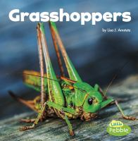 Cover image for Grasshoppers / by Lisa Amstutz.