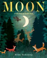 Cover image for Moon : a peek-through picture book / illustrated by Britta Teckentrup.