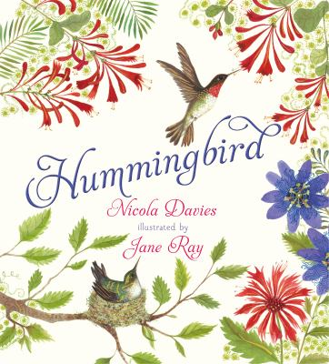 Cover image for Hummingbird / Nicola Davies ; illustrated by Jane Ray.