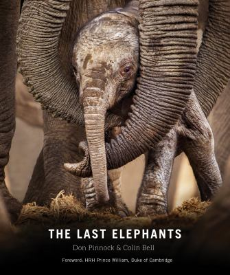 Cover image for The last elephants / compiled by Don Pinnock & Colin Bell ; foreword by HRH Prince William, Duke of Cambridge.