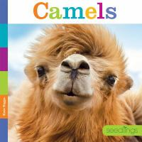 Cover image for Camels / Kate Riggs.