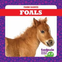Cover image for Foals