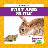 Cover image for Fast and Slow
