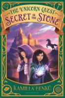 Cover image for Secret in the stone / Kamilla Benko.