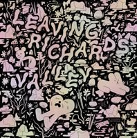 Cover image for Leaving Richard's valley / Michael DeForge.