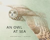 Cover image for An owl at sea / Susan Vande Griek ; art by Ian Wallace.