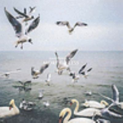 Cover image for More Or Less [compact disc] / Dan Mangan.