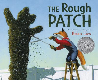 The Rough Patch by Lies, Brian