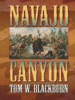 Cover image for Navajo Canyon