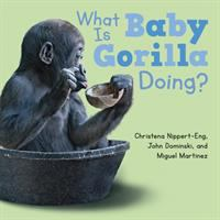 Cover image for What is baby gorilla doing? [board book]