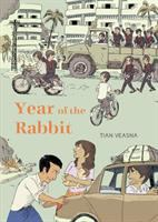 Cover image for Year of the rabbit [graphic novel]