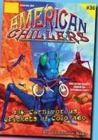 Cover image for Nebraska nightcrawlers : American chillers series