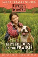 Cover image for Little house on the prairie. bk. 3 : Little House, the Laura years series