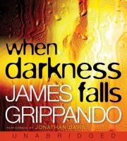 Cover image for When darkness falls. bk. 6 Jack Swyteck series
