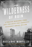 Cover image for The wilderness of ruin : a tale of madness, fire, and the hunt for America's youngest serial killer
