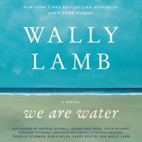 Cover image for We are water A Novel.