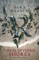 Cover image for These divided shores. bk. 2 Stream Raiders series