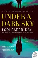 Cover image for Under a dark sky : a novel