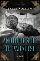 Cover image for Another side of paradise : a novel