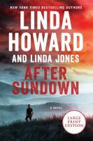 Cover image for After sundown a novel