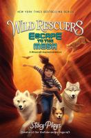 Cover image for Escape to the mesa. bk. 2 : Wild rescuers series