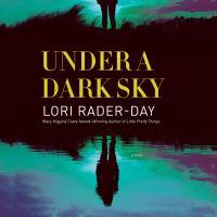 Cover image for Under a dark sky A Novel.