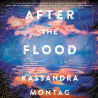 Cover image for After the flood A Novel.