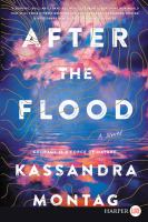 Cover image for After the flood a novel