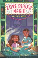 Cover image for A mixture of mischief. bk. 3 : Love sugar magic series