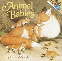 Cover image for Animal babies