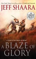 Cover image for A blaze of glory a novel of the Battle of Shiloh