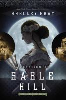 Cover image for Deception on Sable Hill. bk. 2 : Chicago World's Fair mystery series