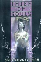 Cover image for Thief of souls. bk. 2 : Star shards series
