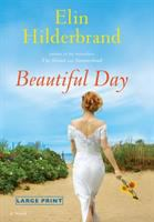 Cover image for Beautiful day a novel