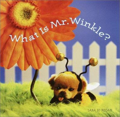 Cover image for What is Mr. Winkle?