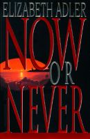 Cover image for Now or never