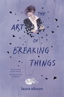 Cover image for The art of breaking things