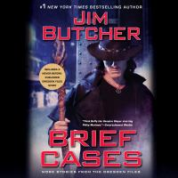 Cover image for Brief cases