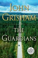 Cover image for The Guardians a novel