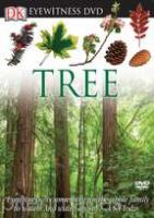 Cover image for Tree [videorecording DVD]
