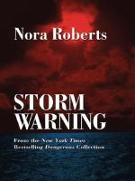 Cover image for Storm warning