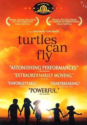 Cover image for Turtles can fly